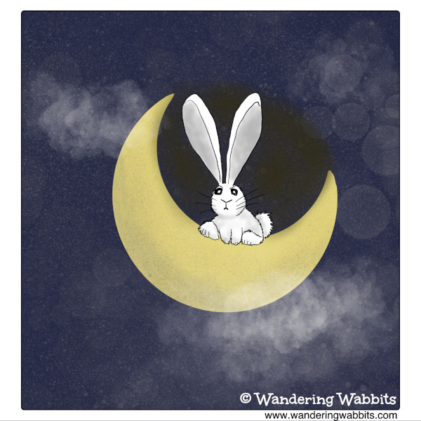 Moon Rabbit Judging