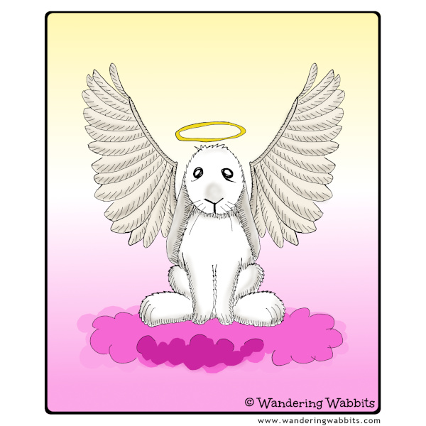 Remembering all bunnies who crossed the rainbow bridge, you are and always will be our beloved little angels!