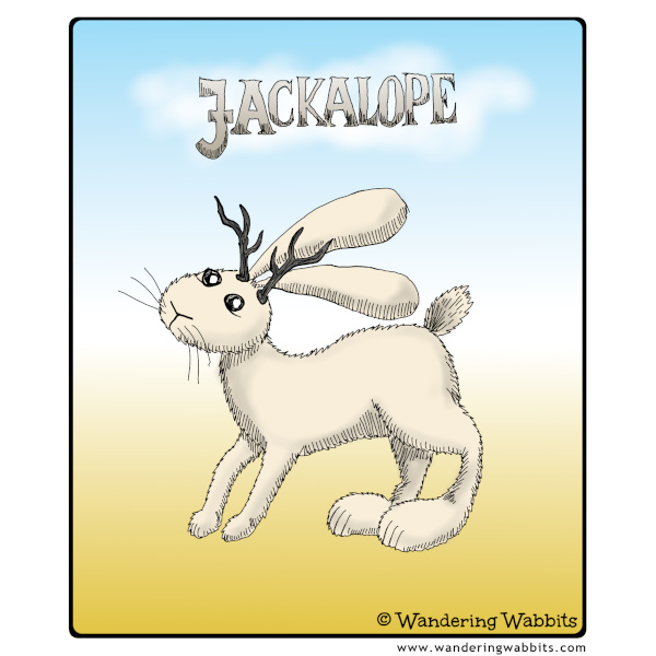 Meet the legendary Jackalope